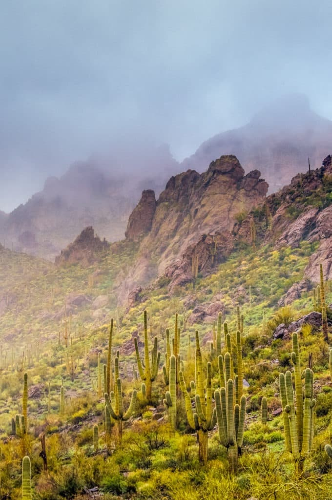 View along the Apache Trail near Phoenix, AZ.