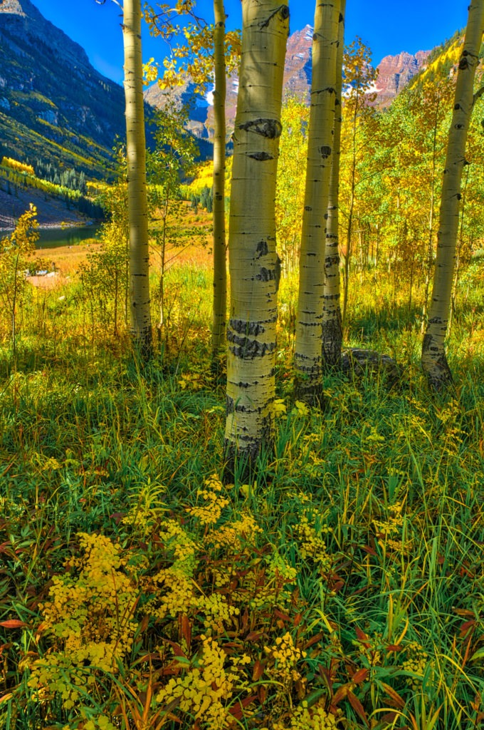 A view of the Maroon Bells in the crisp morning light in the Maroon Bells Recreation Area near Aspen, Colorado.