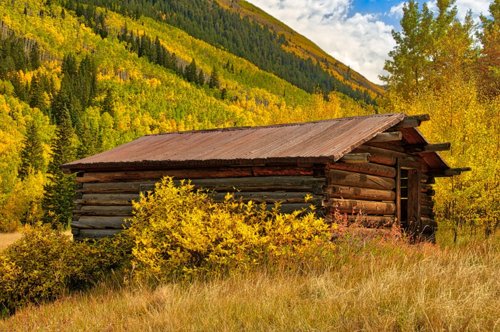 An abandoned miner's cabin in the ghost town of Ashcroft, Colorado, is framed by blazing aspens.