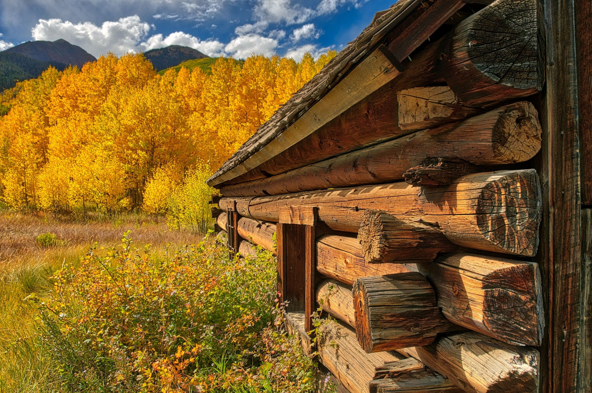 Aspen Area Fall Landscapes from the Rocky Mountains of Colorado