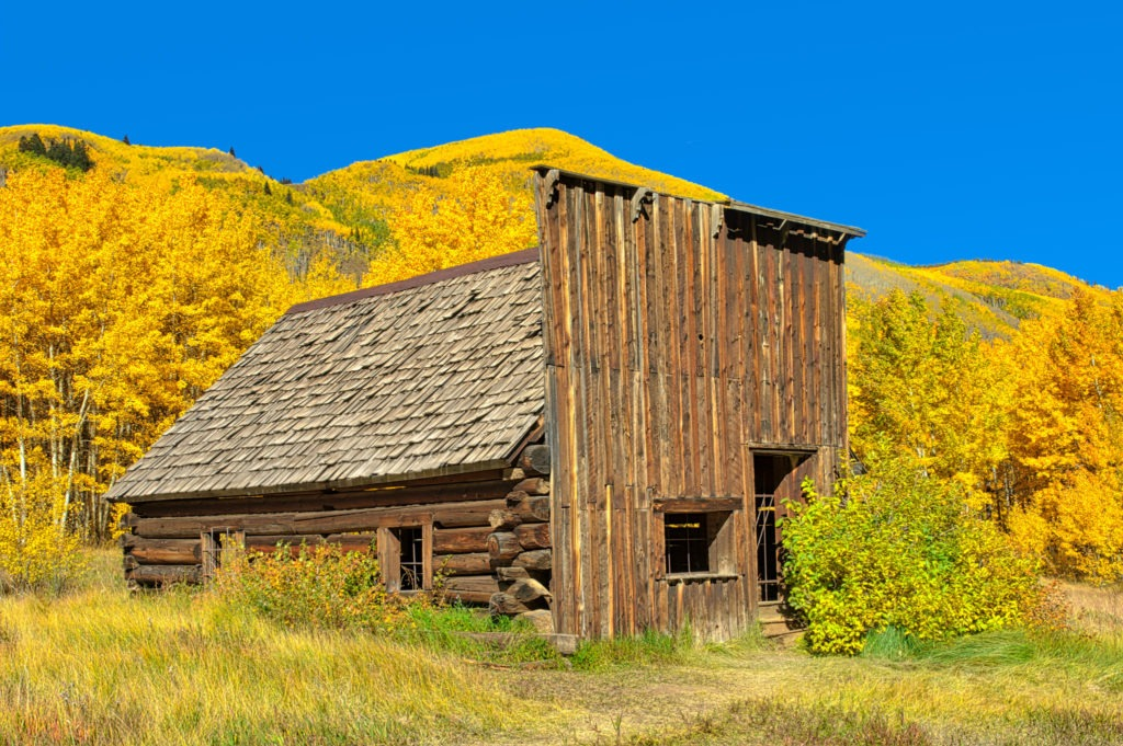 An abandoned false front cabin, which was probably a store, in the ghost town of Ashcroft, Colorado, is framed by blazing aspens.