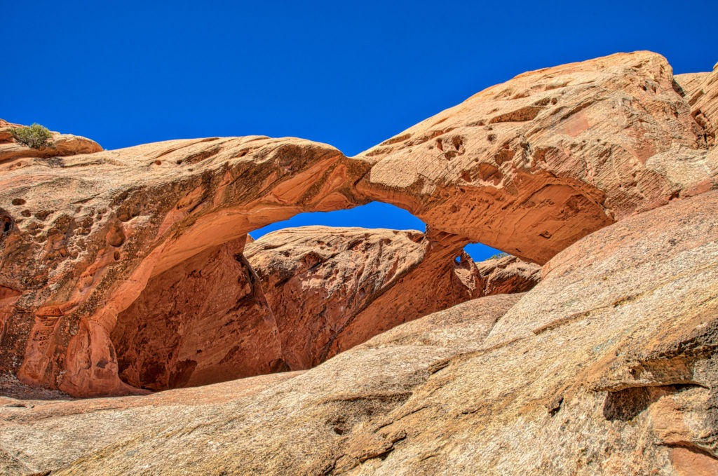 This double arch, sometimes called Trinity Arch, Beta Arch, or Twisted Muley Arch is visible on the west side of Upper Muley Twist Canyon Road, off the Burr Trail in Capitol Reef National Park, Utah.