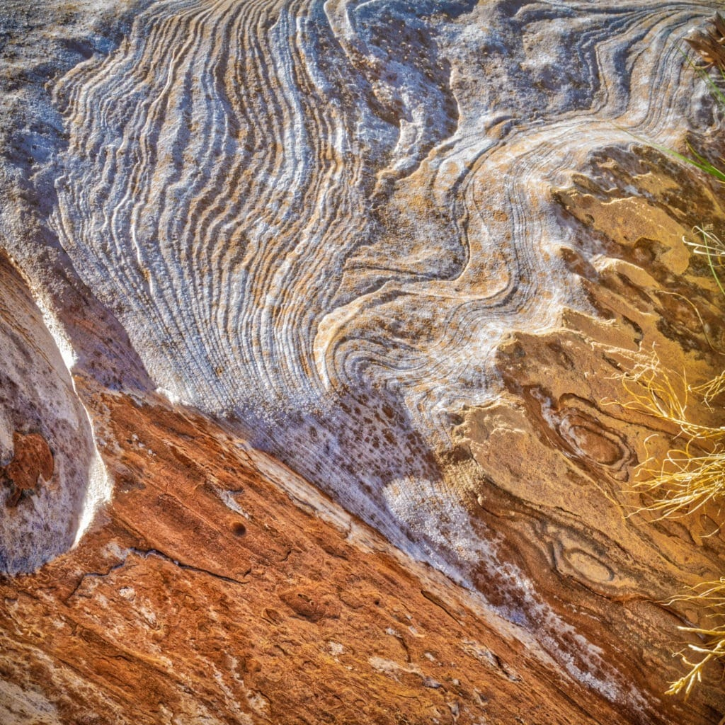 This rock texture along Upper Muley Twist Canyon Road is representative of the beautiful patterns in the sandstone of the Waterpocket Fold, in Capitol Reef National Park, Utah.