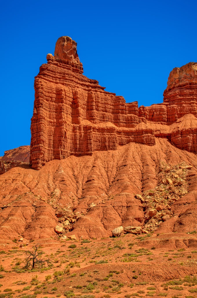This is a view up at Chimney Rock from Utah State Route 24 in Capitol Reef National Park in Utah. The feature is eroded from the Moenkopi Formation and is capped with the Shinarump Member of the Moenkopi Formation.