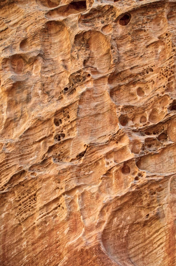 These pock marks in the Wingate Sandstone are due to differential erosion of poorly cemented sand. This view is from along Capitol Gorge Road in Capitol Reef National Park, Utah.