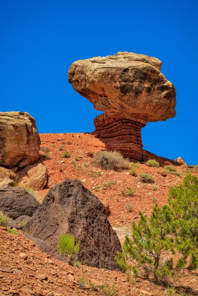 This mushroom rock formation has a Shinarump 'shroom balanced upon a Chinle Formation stem. This formation is on Hartnet Road near Cathedral Valley Overlook in Capitol Reef National Park, Utah.
