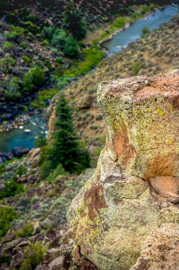 Green lichen grows on a rhyolite boulder in Wild Rivers Recreation Area in northern New Mexico. In the distance is the Rio Grande.