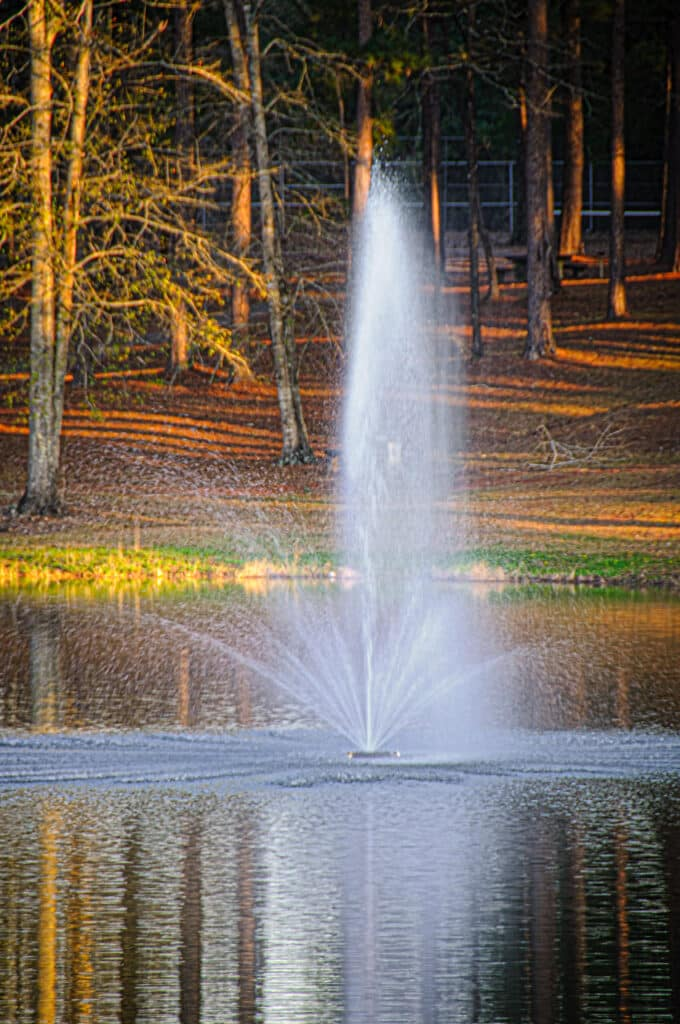 This is a picture of the fountain in the middle of the lake at Evergreen Municipal Park in Evergreen, Alabama.
