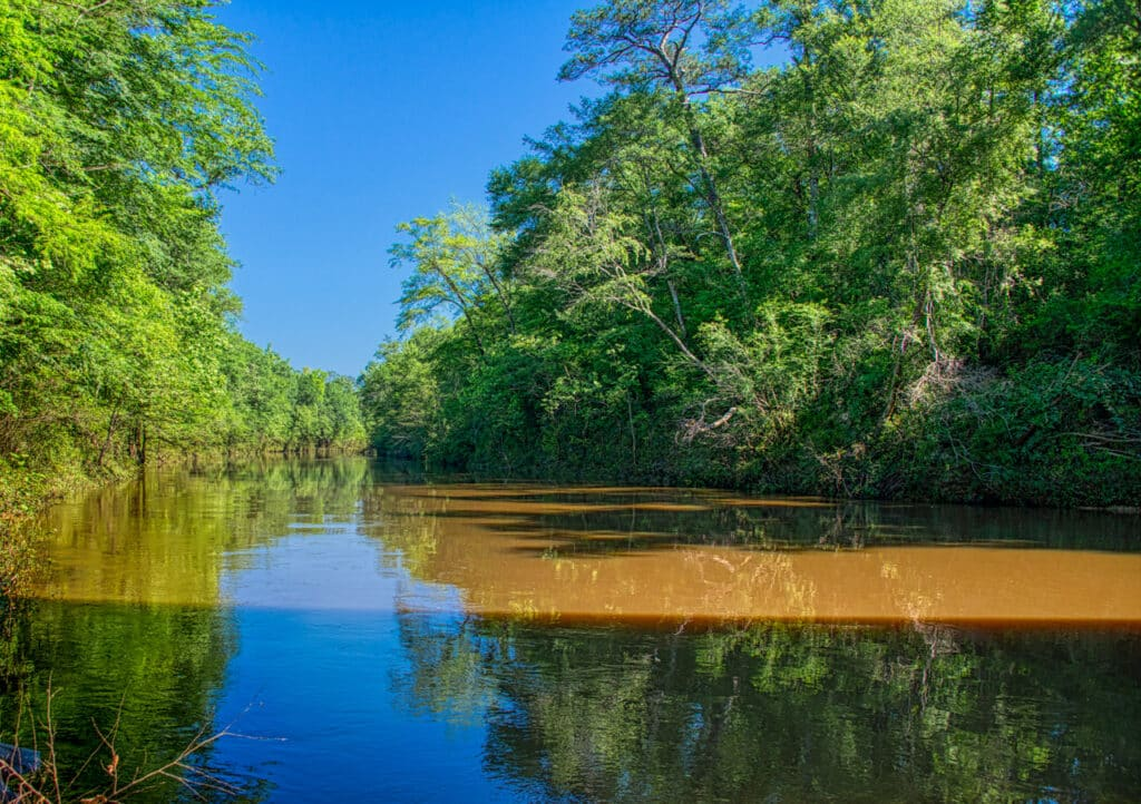 A view of the Sepulga River from the Bull Slough Bridge near Brooklyn, Alabama, in Conecuh County. Adjacent to the bridge is a launch for the Sepulga River Canoe Trail.