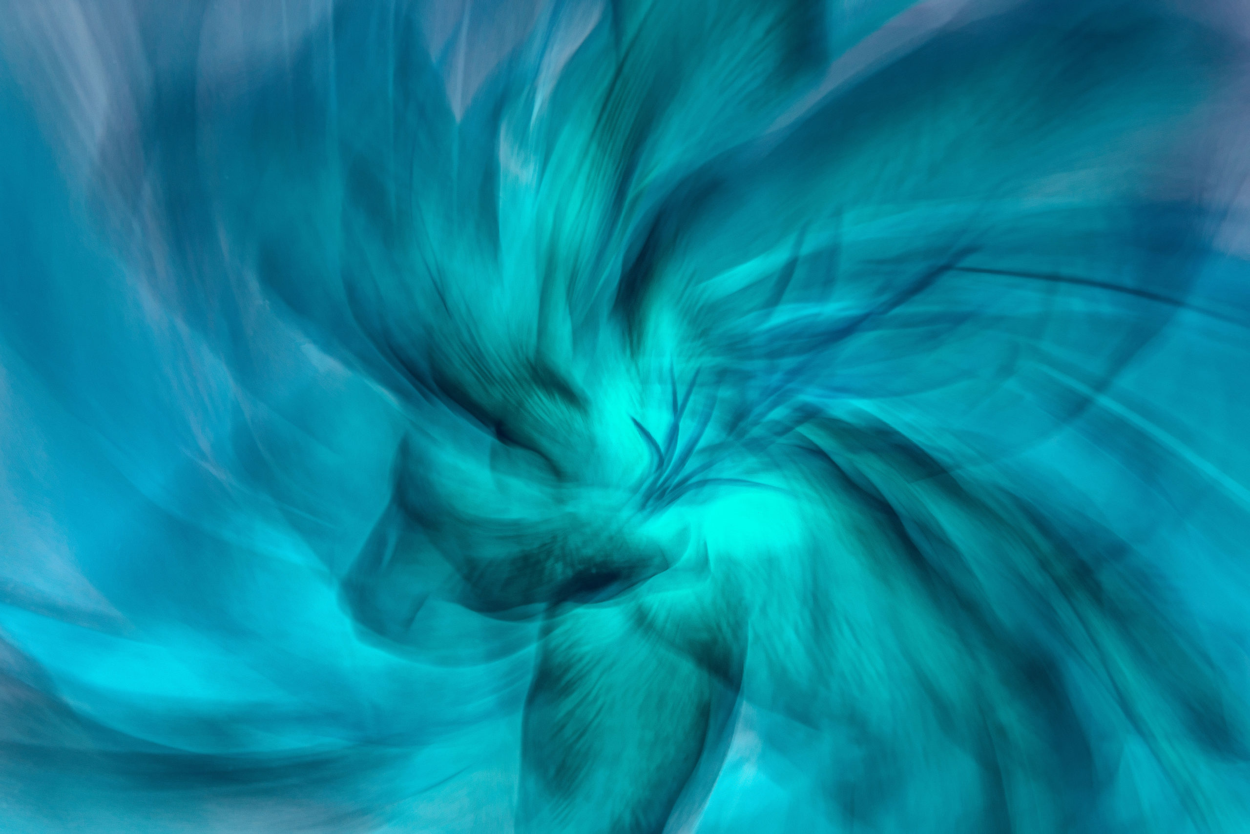 Asian Lily Study in Blue shows a spiral view of an Asiatic lily. The whole photo has been recolored to shades of teal blue.