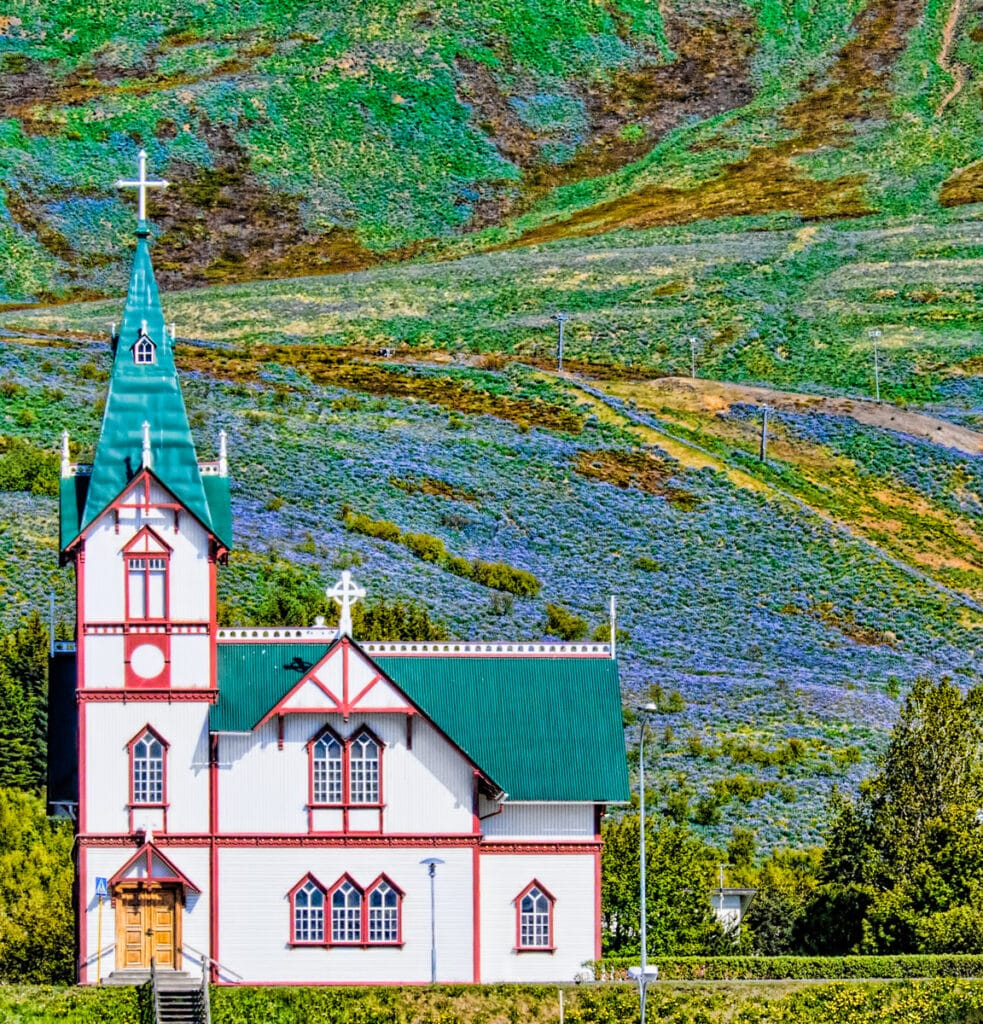 The church in the port town of Húsavík is a major landmark, with the belltower measuring 26 meters (over 85 feet) in height. It was built in 1907 from wood, a somewhat costly building material because it had to be imported from Norway. On the hillside behind the church is purple lupine.