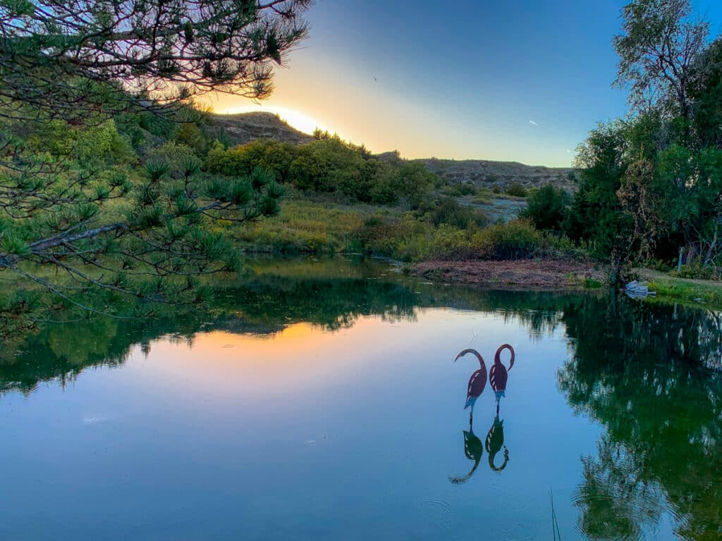 Two crane sculptures are nicely reflected in a still pond at sunset in Lake Scott State Park, Kansas.